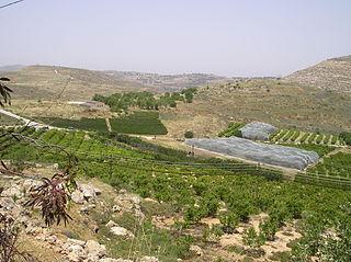 Shiloh (biblical city) Biblical city