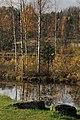 Kivid Vakari järvekaldal.jpg
