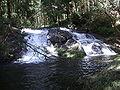 Kodai Neptune falls & Pool.JPG