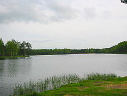 Lake Korkinskoye in Vsevolozhsky District