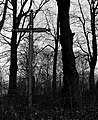 Krzyż - panoramio (2).jpg