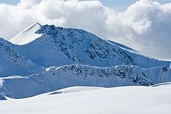 a showy mountain