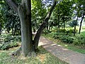 Kunming Botanical Garden - DSC02800.JPG