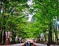 Kyoto Daigo-ji Saidaimon-Tor 7.jpg