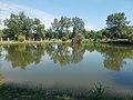Lóga-tó, kis tó, 2017 Esztergom-Kertváros.jpg