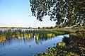 Lac Sidi Mohamed Benali Sidi Bel Abbes 06.jpg