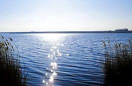 Lake Amara (Ialomița County)