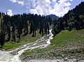 Ladak.jpg