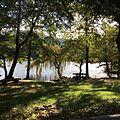 Lago di Origlio.jpg