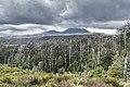 Landscape in Tongariro National Park 21.jpg
