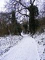 Lane in the Snow - geograph.org.uk - 1112379.jpg