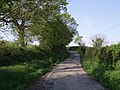 Lane to Thorn - geograph.org.uk - 430671.jpg