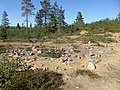 Lapland - Urho Kekkonen National Park - 20180728153501.jpg
