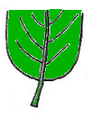 Leaf morphology Arrodonida.PNG