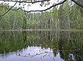 Leivonmäki national park - panoramio (1).jpg