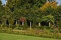 Les plantes du jardin de l'Orangerie (22767778904).jpg