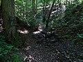 Liblín, pramen pod Libštejnem.jpg