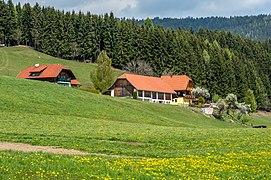 Liebenfels Pflausach 7 Anwesen Süd-Ansicht 25042017 5121.jpg
