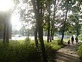 Lieninski District, Mogilev, Belarus - panoramio (390).jpg