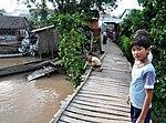 Life on the Mekong Delta (9150351512).jpg
