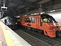 Limited express trains at Hakata Station.jpg