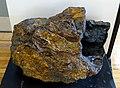 Limonite, bog iron ore, Nova Scotia - Redpath Museum - McGill University - Montreal, Canada - DSC08020.jpg