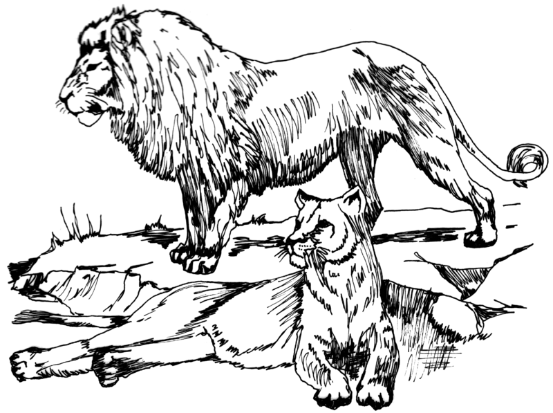 file lion psf png wikimedia commons