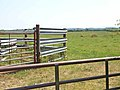 Livestock pen at Boustead Hill - geograph.org.uk - 206489.jpg