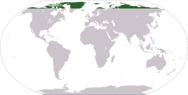 Lagekarte Arktis