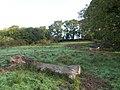 Log near Medland - geograph.org.uk - 581345.jpg