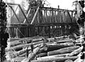 Logs jammed up against the Humptulips River railroad bridge, Washington, 1909 (INDOCC 347).jpg