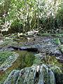 Lomas de Banao-Ruisseau.jpg