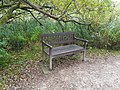 Long shot of the bench (OpenBenches 9302-1).jpg