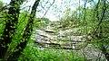 Lovech, Bulgaria - panoramio (125).jpg