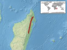 Lygodactylus bivittis distribution.png
