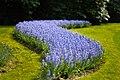 M^m Flores en el parque en la Haya - Creative Commons by gnuckx - panoramio (7).jpg