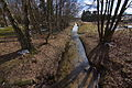 Mühlteichzufluss der Hardau in Hösseringen (Suderburg) IMG 5738.jpg