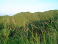 Maasin City Green Mountains.png