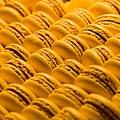 Macarons téléversés par Samsara 02.jpg