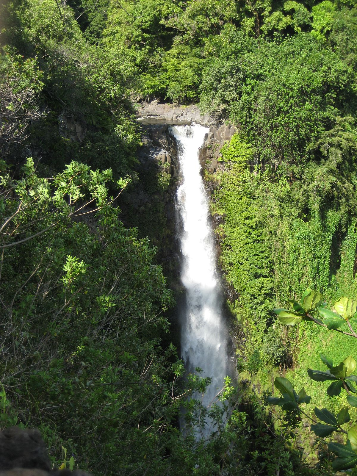 hawaii national park muslim girl personals Craigslist provides local classifieds and forums for jobs, housing, for sale, services, local community, and events.