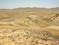 Jurassic limestones and marls (the Matmor Formation) in southern Israel.