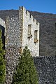 Manastir Manasija1.jpg