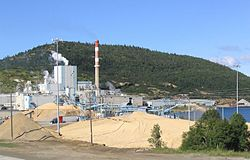 Marathon Pulp Mill, operated 1946-2009
