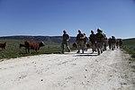 Marines Conduct Trilateral Training during Lisa Azul 150309-M-XZ244-210.jpg