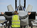 Marshalling of RAF Tornado Jet During Ex Red Flag in the USA MOD 45157010.jpg