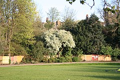 Maryon Park, Charlton, South East London.jpg