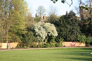 Maryon Park park located in Charlton in the Royal Borough of Greenwich