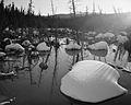 Mcintyre Creek, Whitehorse, Yukon (12283311855).jpg