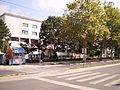 Medicinski fakultet u Nišu.2.JPG
