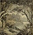 Merveilles de la nature - l'homme et les animaux, description populaire des races humaines et des règne animal (1878) (14800534723).jpg